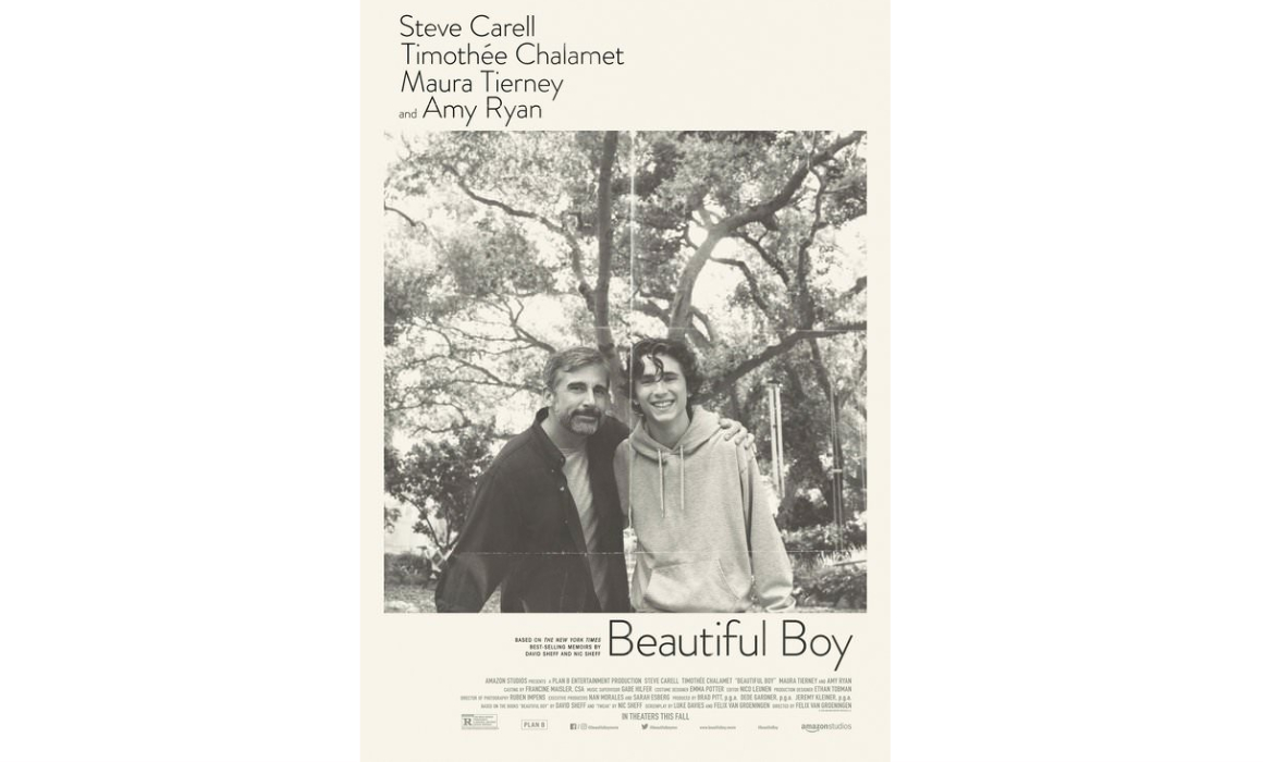beautiful boy poster Slider Image